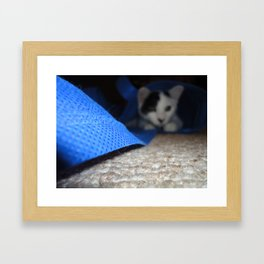 Cat's Back in the Bag Framed Art Print