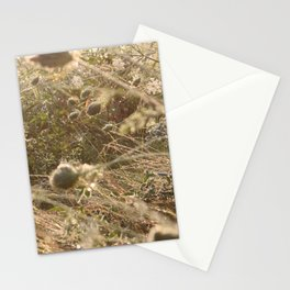 Washed in the gentle dawn Stationery Cards