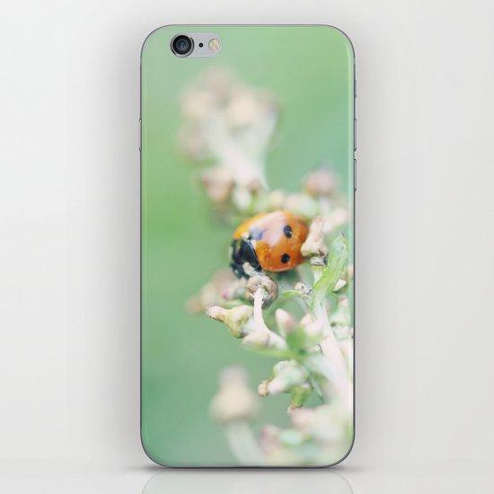 Enchanted Lady iPhone & iPod Skin