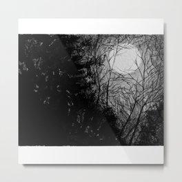 Moonlit trees Metal Print