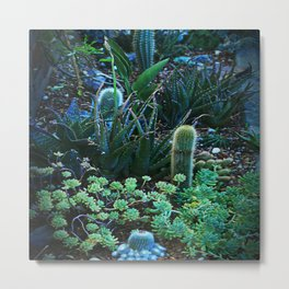 Green Teal Succulent Garden Night Metal Print