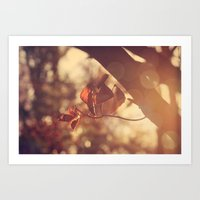 stay gold Art Prints featuring Stay Gold by Oh, Good Gracious!
