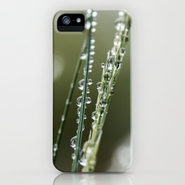 Waterdrops in the grass iPhone Case