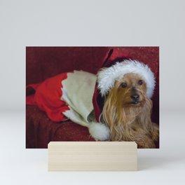 Yorkshire (yorkie) / Silky Terrier Christmas Mini Art Print