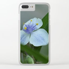 "tradescantia ""Osprey"" Clear iPhone Case"