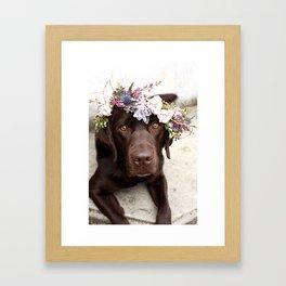 Flower Crown Beautiful Dog Portrait Framed Art Print