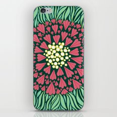 Pink and green florals iPhone & iPod Skin