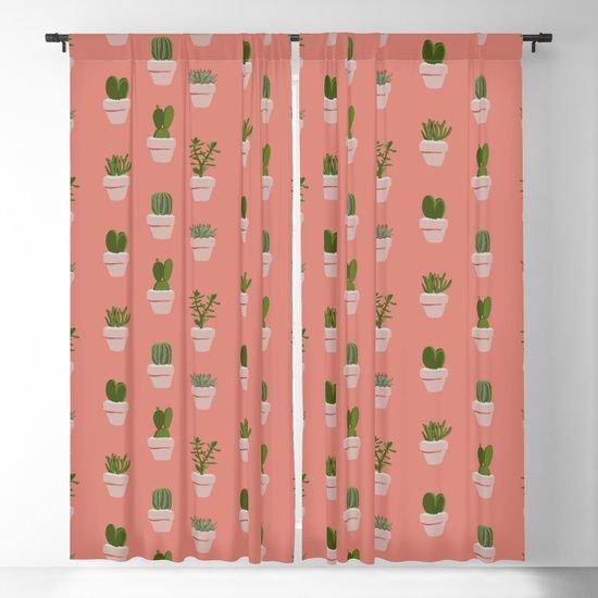 Cacti & Succulents by crumpetsandcrabsticks