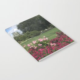 Blooms in Boston Notebook