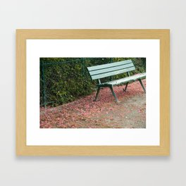 Paris Bench with Blossoms Framed Art Print