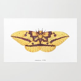Imperial Moth (Eacles imperialis) Rug