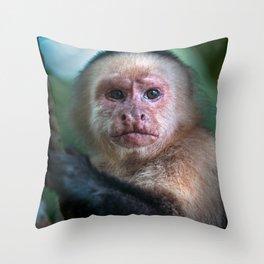 Capuchin Daydream - Cahuita Costa Rica Wildlife Throw Pillow