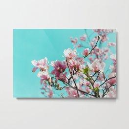 Central Park Cherry Blossom Metal Print