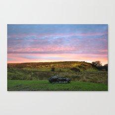 Spring evening Canvas Print