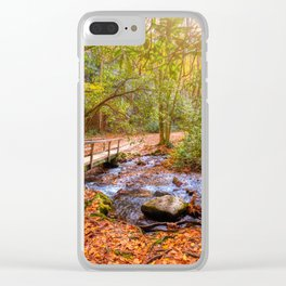 Smoky Mountains Clear iPhone Case