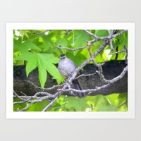 gray Art Prints featuring Gray by Lindsey Hart Photography