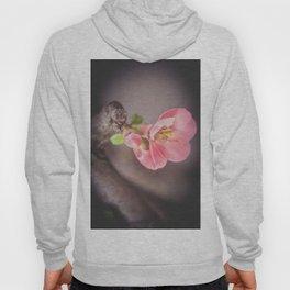 Tree blossom Hoody