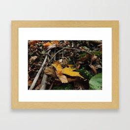 Leaf Litter Gold Framed Art Print