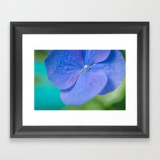 Blue Beauty Framed Art Print