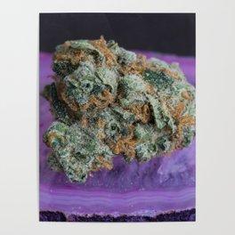 Jenny's Kush Medical Weed Poster