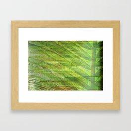 Find me under the palms. Framed Art Print