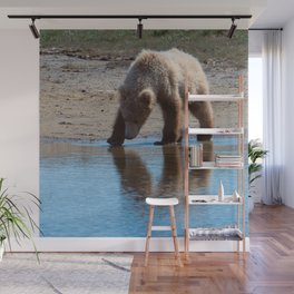 Grizzly Cub Drinking from Stream  Alaska Katmai National Park #Socety6 Wall Mural