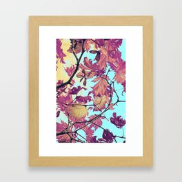 Japanaese Tree with hänging nouses in the Sun Framed Art Print
