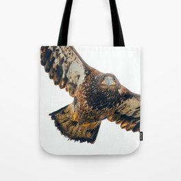 Young Bald Eagle in Breathtaking Flyby Tote Bag