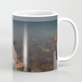 Worms Head Gower Coffee Mug