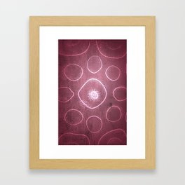 Chladni Pattern - Light Pink by Spencer Gee Framed Art Print