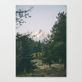 Mount Hood XIV Canvas Print