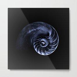 Sacred Spiral Metal Print