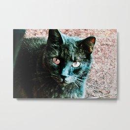 Feline Metal Print