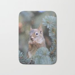 Mr. Squirrel ~ I Bath Mat