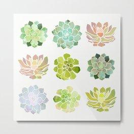 Spring Succulents Metal Print