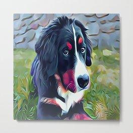 Burnese Mountain Dog Puppy Metal Print