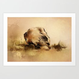 Echidna (Aus series) Art Print