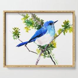 Mountain Bluebird, blue bird, art design blue green cottege Serving Tray