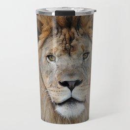 Male Lion Portrait Travel Mug