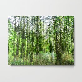 cannot see the wood for the trees Metal Print