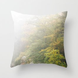 Lake Minnewaska Throw Pillow