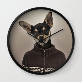 Chihuahua wearing a pullover Wall Clock