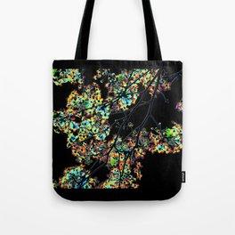 Mismatch Color Hatch Tote Bag