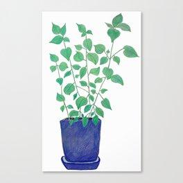 petite plante de maison Canvas Print