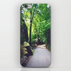 A Woodland Path iPhone & iPod Skin