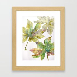Aralia japonica Leaves Foliage Framed Art Print