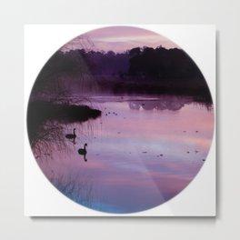 Pond Circle Metal Print