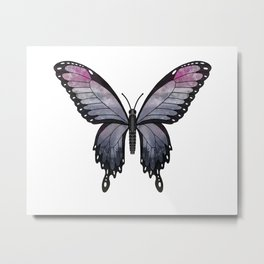 heather imp swallowtail (Papilio impa hathir) Metal Print