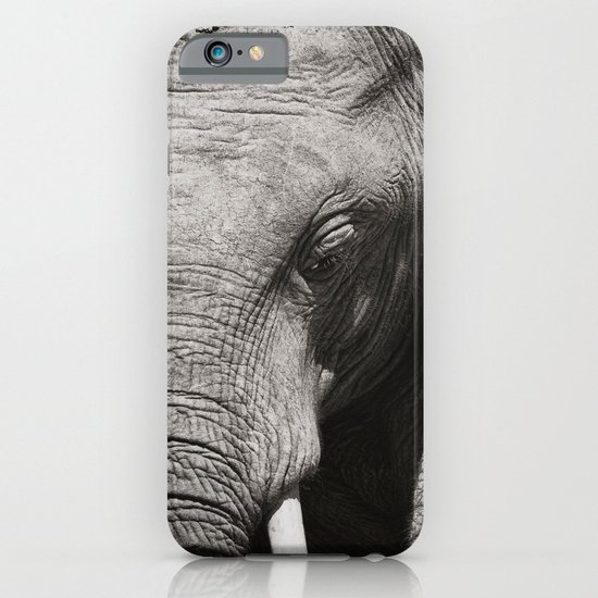 African Elephant iPhone & iPod Case