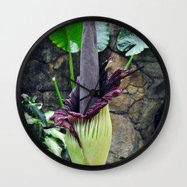 Amorphophallus Titanum Wall Clock